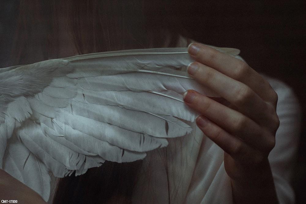 Like Angles Wings (2)