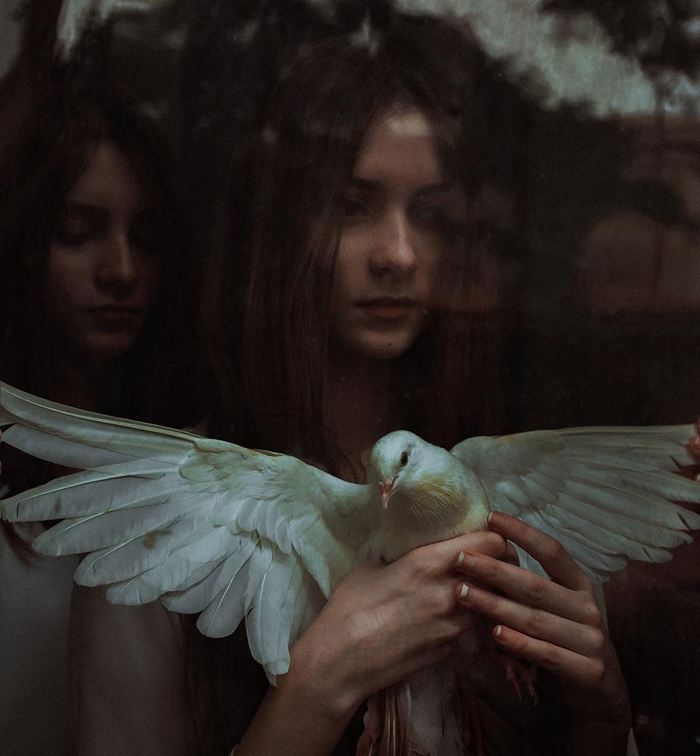 Like Angles Wings (8)